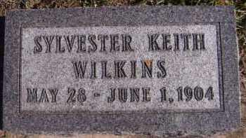 WILKINS, SYLVESTER KEITH - Moody County, South Dakota   SYLVESTER KEITH WILKINS - South Dakota Gravestone Photos
