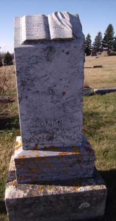 WILKINS, SOLOMON H - Moody County, South Dakota | SOLOMON H WILKINS - South Dakota Gravestone Photos