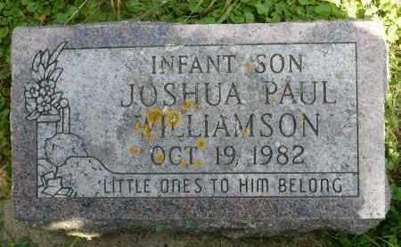 WILLIAMSON, JOSHUA PAUL - Moody County, South Dakota | JOSHUA PAUL WILLIAMSON - South Dakota Gravestone Photos