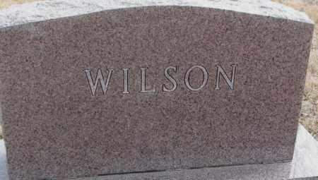 WILSON, PLOT - Moody County, South Dakota   PLOT WILSON - South Dakota Gravestone Photos