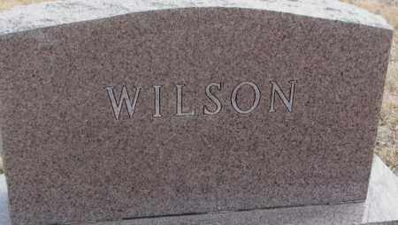 WILSON, PLOT - Moody County, South Dakota | PLOT WILSON - South Dakota Gravestone Photos