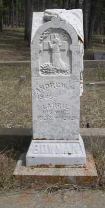 BOWMAN, ANDREW M. - Pennington County, South Dakota   ANDREW M. BOWMAN - South Dakota Gravestone Photos
