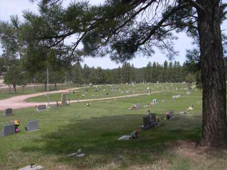 *HILL CITY CEMETERY, VIEW OF - Pennington County, South Dakota | VIEW OF *HILL CITY CEMETERY - South Dakota Gravestone Photos