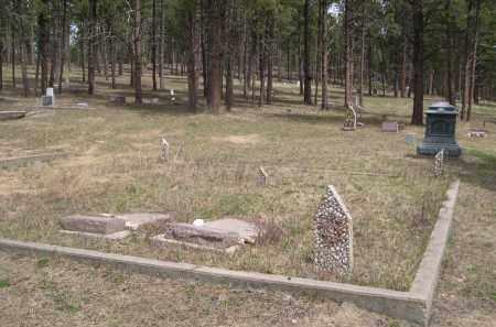 LAPP, JOHN - Pennington County, South Dakota   JOHN LAPP - South Dakota Gravestone Photos
