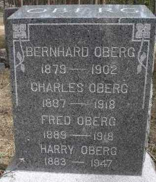 OBERG, CHARLES - Pennington County, South Dakota | CHARLES OBERG - South Dakota Gravestone Photos