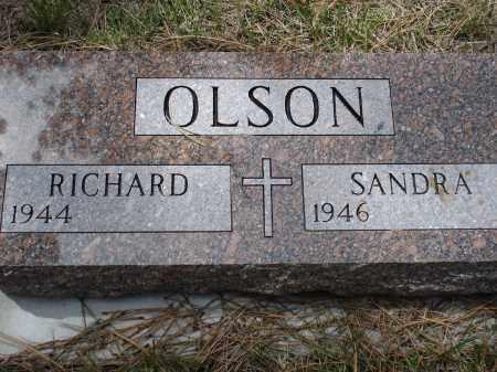OLSON, RICHARD - Pennington County, South Dakota | RICHARD OLSON - South Dakota Gravestone Photos