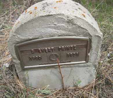 PRINTZ, B. EVERT - Pennington County, South Dakota | B. EVERT PRINTZ - South Dakota Gravestone Photos