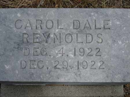 REYNOLDS, CAROL DALE - Pennington County, South Dakota | CAROL DALE REYNOLDS - South Dakota Gravestone Photos