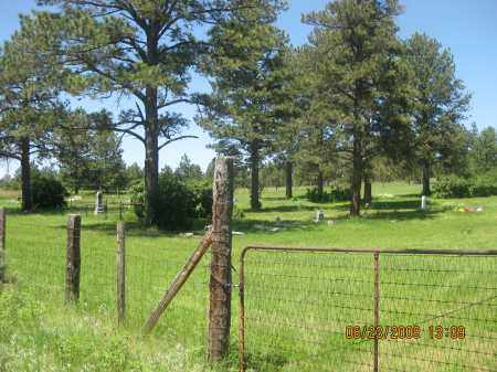 *ROCKERVILLE CEMETERY, VIEW FROM GATE - Pennington County, South Dakota | VIEW FROM GATE *ROCKERVILLE CEMETERY - South Dakota Gravestone Photos