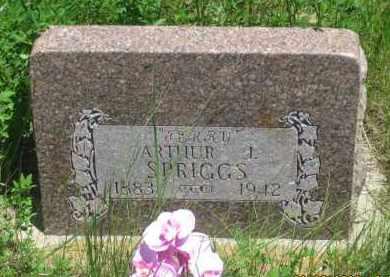 "SPRIGGS, ARTHUR J.   ""TERRY"" - Pennington County, South Dakota | ARTHUR J.   ""TERRY"" SPRIGGS - South Dakota Gravestone Photos"