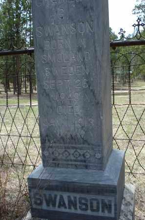 SWANSON, CHARLES G. - Pennington County, South Dakota | CHARLES G. SWANSON - South Dakota Gravestone Photos