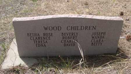 WOOD, CLARENCE A - Pennington County, South Dakota | CLARENCE A WOOD - South Dakota Gravestone Photos