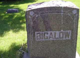 BIGALOW, HEADSTONE - Sanborn County, South Dakota   HEADSTONE BIGALOW - South Dakota Gravestone Photos