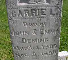 DEMING, CARRIE L - Sanborn County, South Dakota | CARRIE L DEMING - South Dakota Gravestone Photos