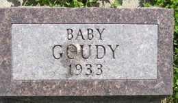 GOUDY, BABY - Sanborn County, South Dakota | BABY GOUDY - South Dakota Gravestone Photos
