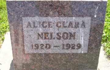 NELSON, ALICE CLARA - Sanborn County, South Dakota   ALICE CLARA NELSON - South Dakota Gravestone Photos