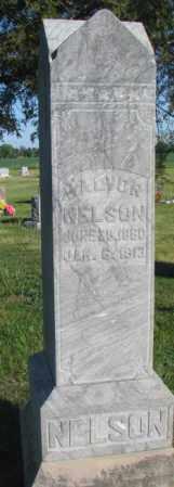 NELSON, HALVOR - Sanborn County, South Dakota | HALVOR NELSON - South Dakota Gravestone Photos
