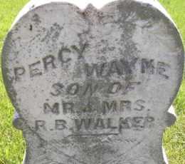 WALKER, PERCY WAYNE - Sanborn County, South Dakota | PERCY WAYNE WALKER - South Dakota Gravestone Photos