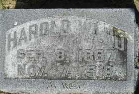 WARD, HAROLD - Sanborn County, South Dakota | HAROLD WARD - South Dakota Gravestone Photos