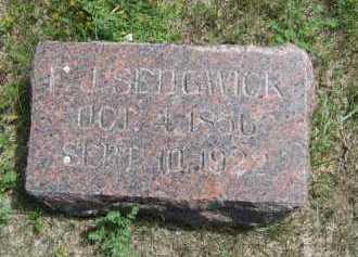 SEDGWICK, FRANCIS - Sully County, South Dakota | FRANCIS SEDGWICK - South Dakota Gravestone Photos