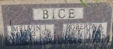 BICE, MELVIN L. - Tripp County, South Dakota | MELVIN L. BICE - South Dakota Gravestone Photos