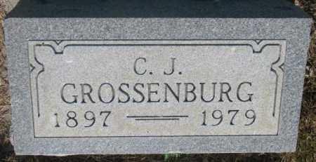 GROSSENBURG, C.J. - Tripp County, South Dakota | C.J. GROSSENBURG - South Dakota Gravestone Photos