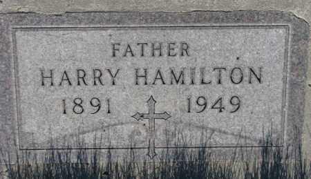 HAMILTON, HARRY - Tripp County, South Dakota   HARRY HAMILTON - South Dakota Gravestone Photos
