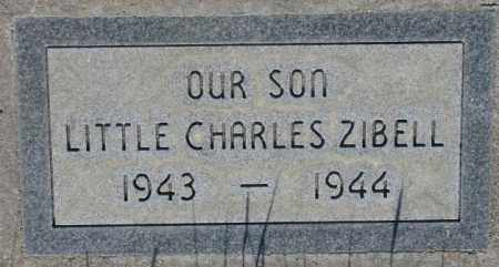 ZIBELL, CHARLES - Tripp County, South Dakota   CHARLES ZIBELL - South Dakota Gravestone Photos