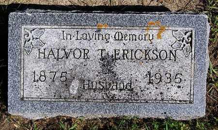 ERICKSON, HALVOR T - Turner County, South Dakota | HALVOR T ERICKSON - South Dakota Gravestone Photos