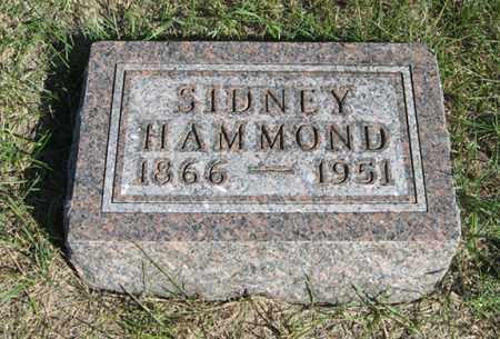 HAMMOND, SIDNEY - Turner County, South Dakota | SIDNEY HAMMOND - South Dakota Gravestone Photos