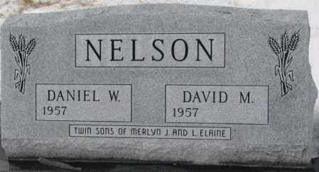 NELSON, DAVID M. - Turner County, South Dakota   DAVID M. NELSON - South Dakota Gravestone Photos