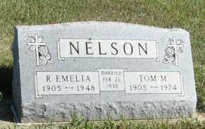 NELSON, R. EMELIA - Turner County, South Dakota   R. EMELIA NELSON - South Dakota Gravestone Photos