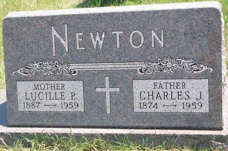 NEWTON, LUCILLE P. - Turner County, South Dakota | LUCILLE P. NEWTON - South Dakota Gravestone Photos