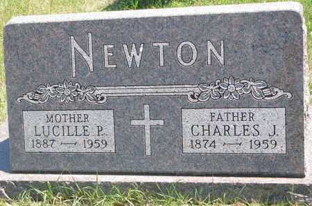 NEWTON, CHARLES J. - Turner County, South Dakota | CHARLES J. NEWTON - South Dakota Gravestone Photos