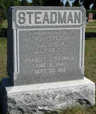 STEADMAN, FRANCES - Turner County, South Dakota | FRANCES STEADMAN - South Dakota Gravestone Photos
