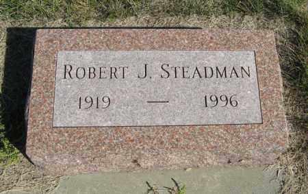 STEADMAN, ROBERT J. - Turner County, South Dakota | ROBERT J. STEADMAN - South Dakota Gravestone Photos
