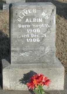 ALBIN, OLIVER WILLIAM - Union County, South Dakota   OLIVER WILLIAM ALBIN - South Dakota Gravestone Photos