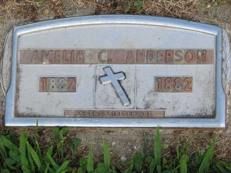 ANDERSON, AMELIA C - Union County, South Dakota | AMELIA C ANDERSON - South Dakota Gravestone Photos
