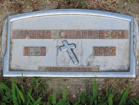 ANDERSON, AMELIA C - Union County, South Dakota | AMELIA C ANDERSON - South Dakota Gravestone Photos