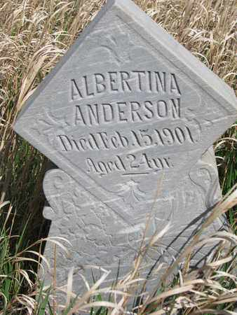 ANDERSON, ALBERTINA - Union County, South Dakota | ALBERTINA ANDERSON - South Dakota Gravestone Photos