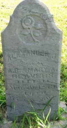 BEAVERS, ALEXANDER J. - Union County, South Dakota   ALEXANDER J. BEAVERS - South Dakota Gravestone Photos
