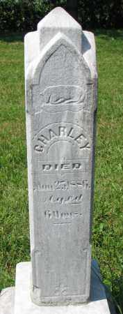 BEAVERS, CHARLEY - Union County, South Dakota   CHARLEY BEAVERS - South Dakota Gravestone Photos