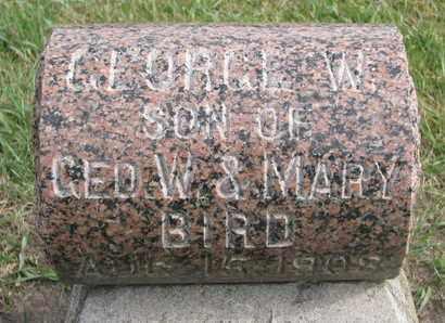 BIRD, GEORGE W. - Union County, South Dakota | GEORGE W. BIRD - South Dakota Gravestone Photos