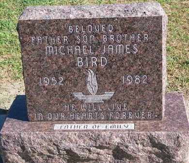 BIRD, MICHAEL JAMES - Union County, South Dakota   MICHAEL JAMES BIRD - South Dakota Gravestone Photos