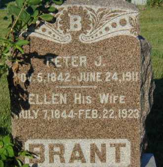 BRANT, ELLEN - Union County, South Dakota | ELLEN BRANT - South Dakota Gravestone Photos