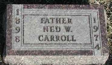 CARROLL, NED W - Union County, South Dakota   NED W CARROLL - South Dakota Gravestone Photos