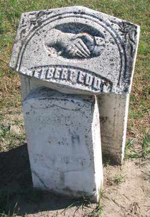 EDDY, DELBERT (MILITARY) - Union County, South Dakota   DELBERT (MILITARY) EDDY - South Dakota Gravestone Photos