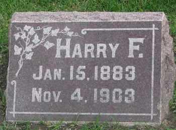 ERICSON, HARRY F. - Union County, South Dakota   HARRY F. ERICSON - South Dakota Gravestone Photos