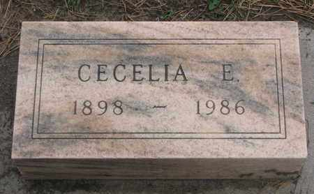 HASSON, CECELIA E. - Union County, South Dakota | CECELIA E. HASSON - South Dakota Gravestone Photos