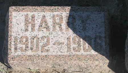 HATCH, HARRY - Union County, South Dakota | HARRY HATCH - South Dakota Gravestone Photos